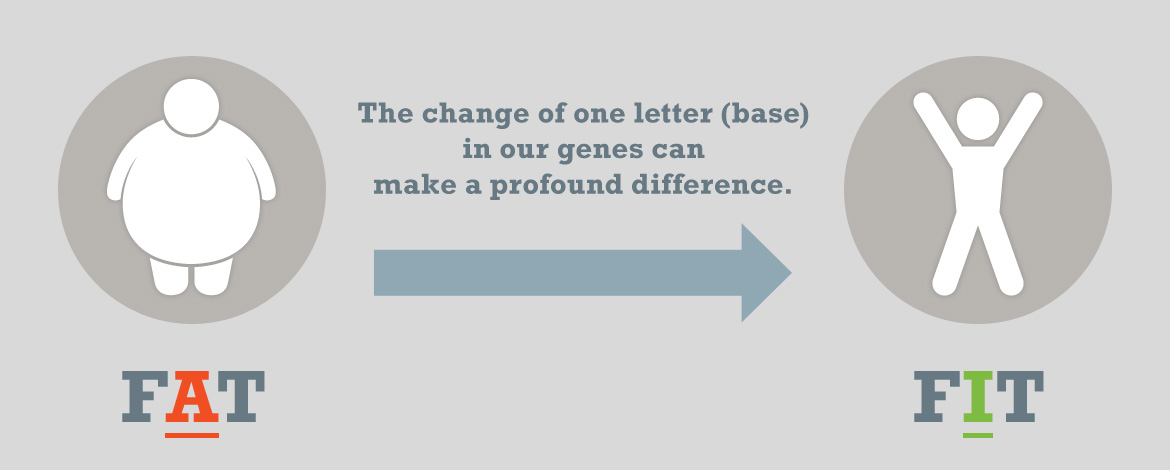 The change of one letter (base) in our genes can make a profound difference.